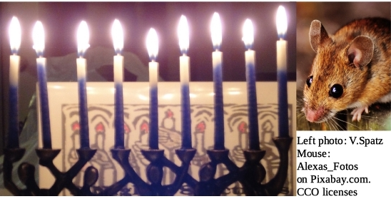 Mouse and Menorah